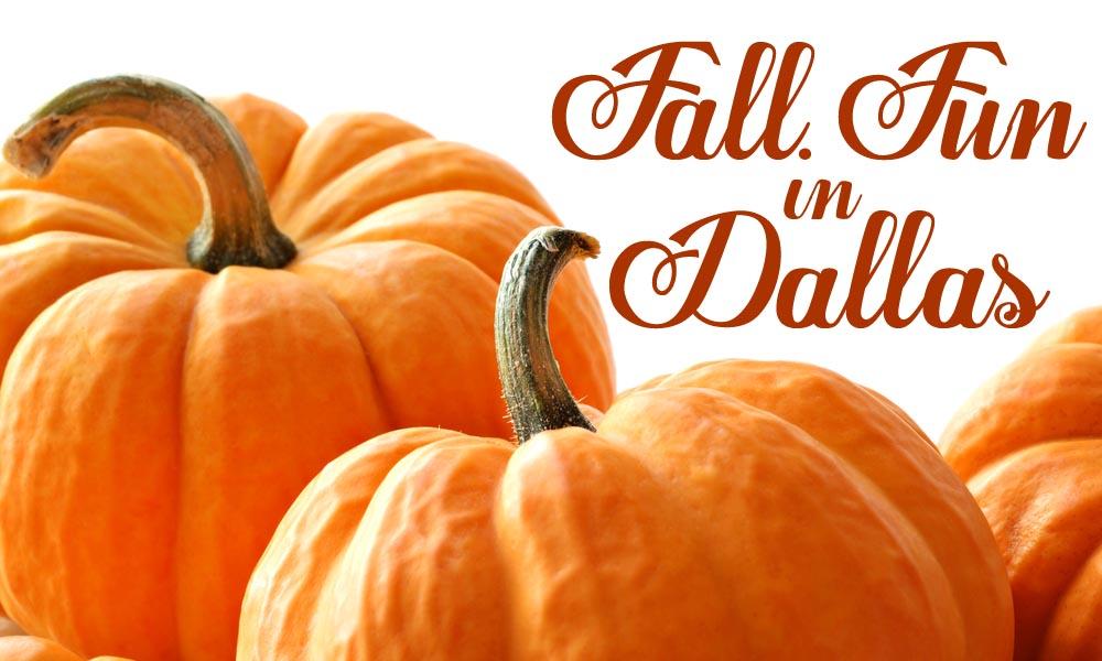fall-fun-in-dallas-autumn-2013-events-dallas-fort-worth-texas-shutterstock_60615121