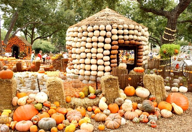 one-sheepish-girl-dallas-arboretum-pumpkin-houses-1.jpg