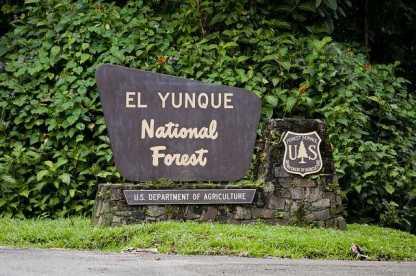 El_Yunque_National_Park-Rio_Grande-Puerto_Rico-107d6bd8859b48d49452312809bea98b_c