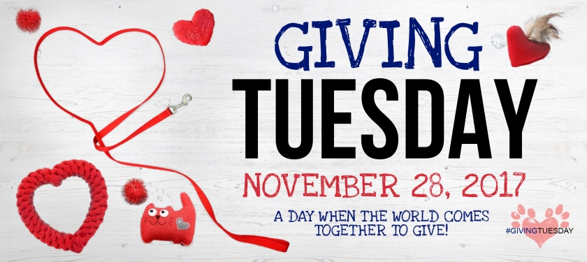 Giving-Tuesday-web-banner-2